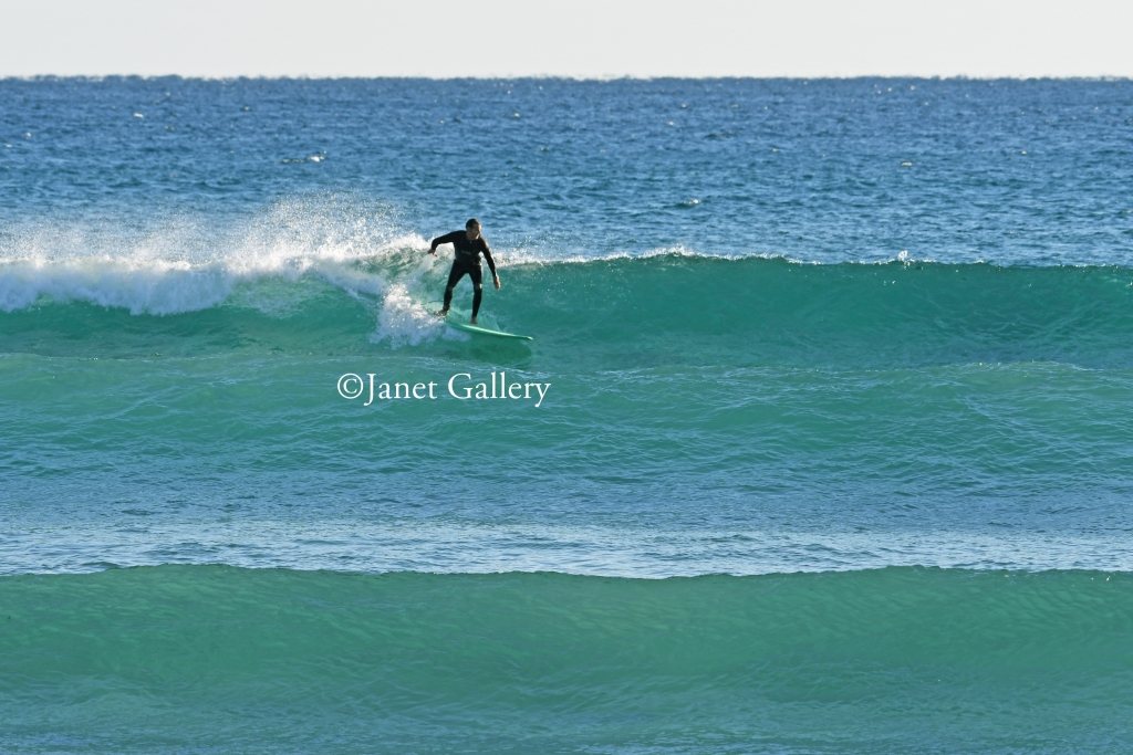 Local Surfer on a Florida wave
